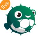 河豚直播体育官网下载