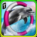 海豚比赛3D正式版