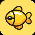 大金鱼v1.0.1官方正式版
