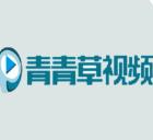 青青草在线视频官方版