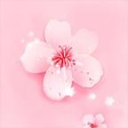 桃花短视频v1.0官方正式版