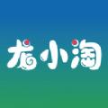 龙小淘app下载安卓版-巴巴皮软件下载